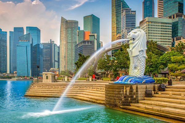 Nhập hàng từ Singapore