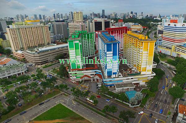 Nhập hàng bao thuế Singapore về Việt Nam