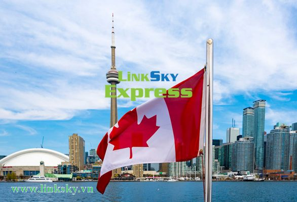 Vận chuyển hàng hóa đi Canada ở Tp Hồ Chí Minh